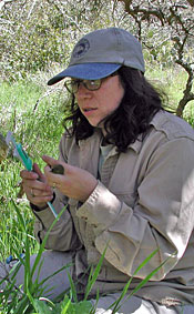 handheld small greenish-yellow bird about to be measured by a woman
