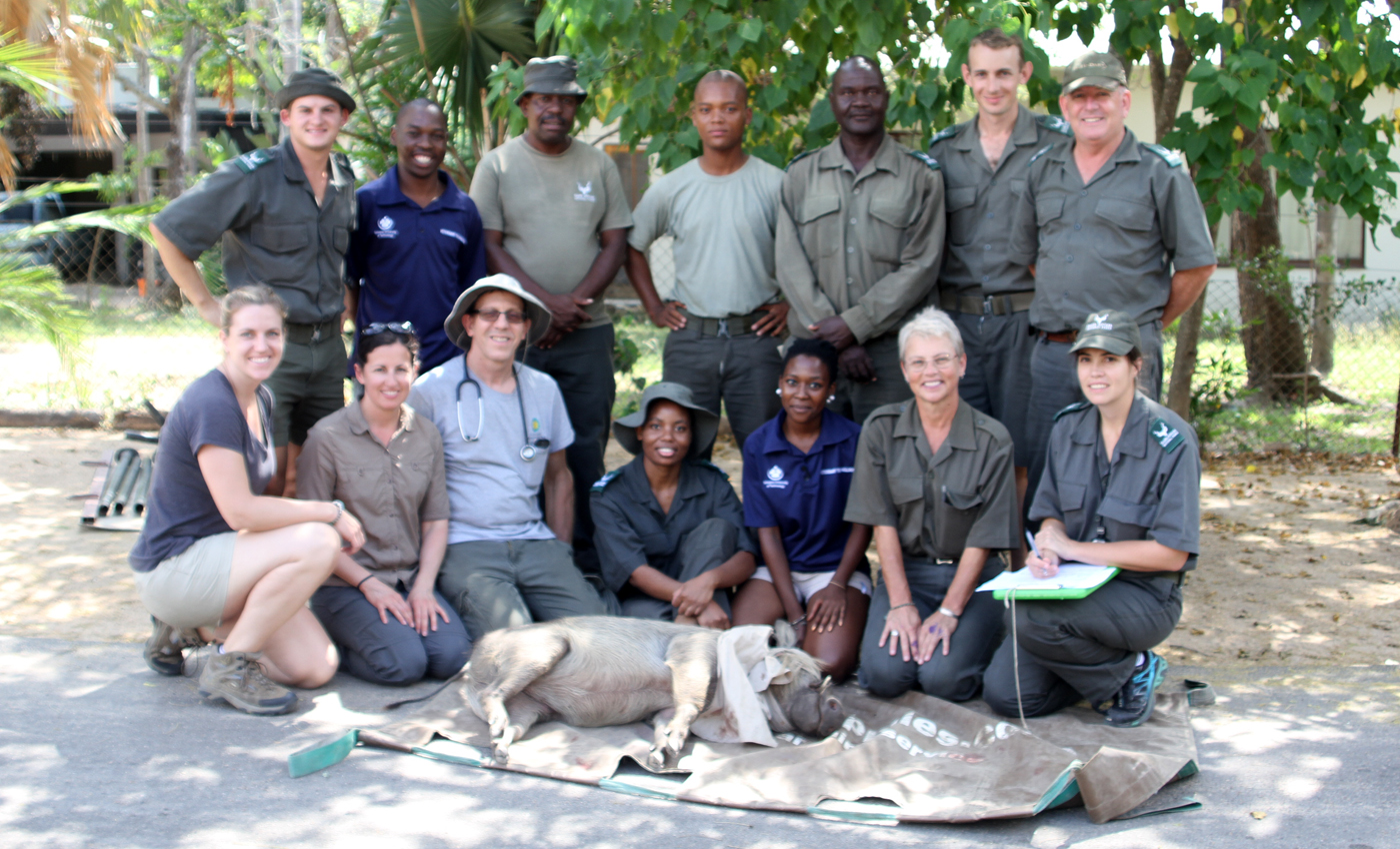 Warthog Wildlife Team