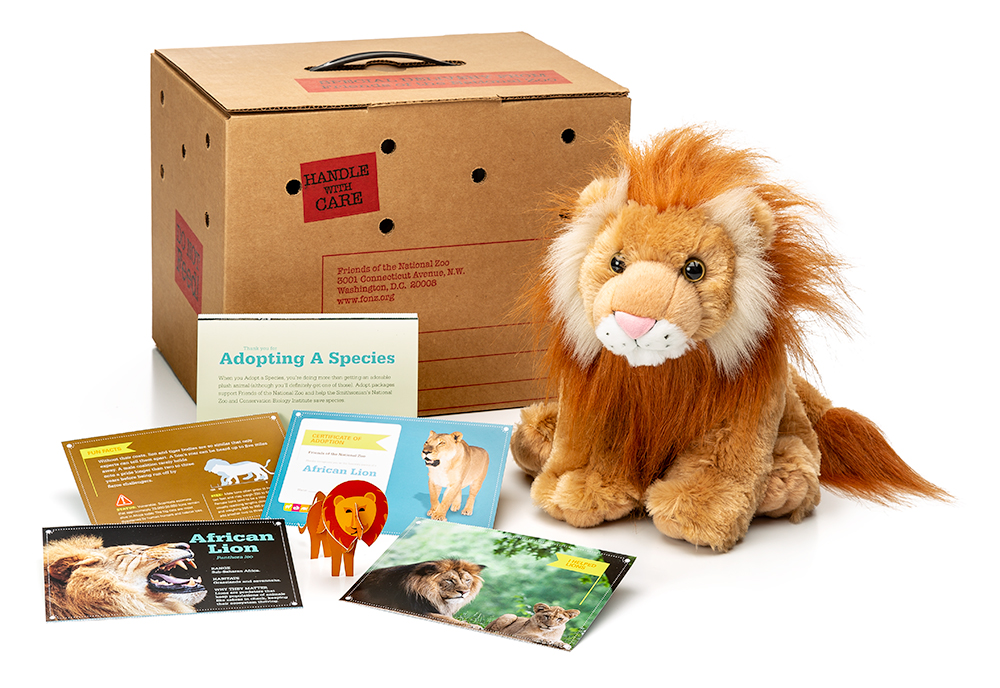 adopt an African lion package featuring a plush, carrier box and photo-filled five card set