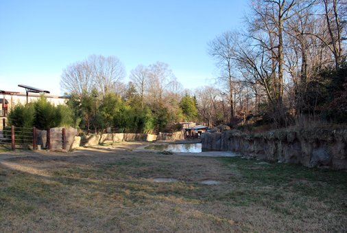 landscape view of elephant yard including pool