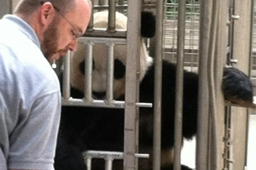 keeper with giant panda