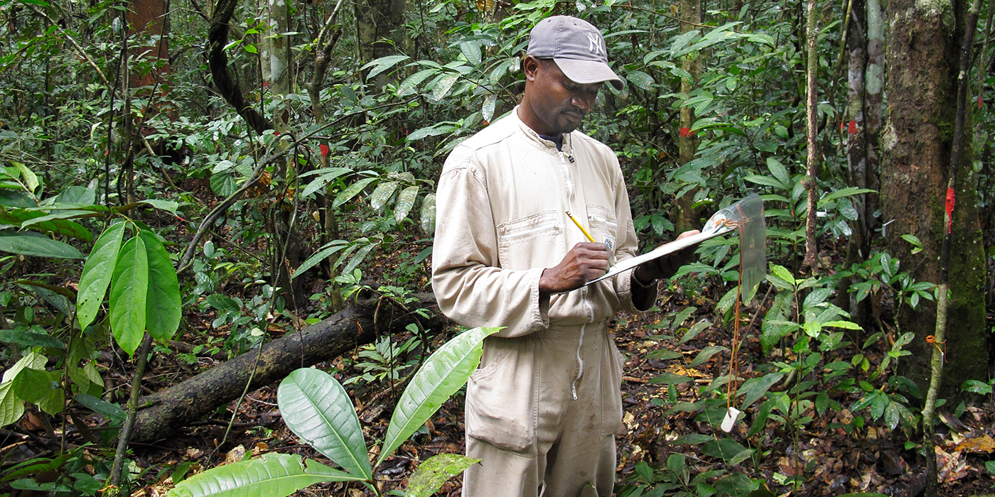 scientist takes notes in the forest
