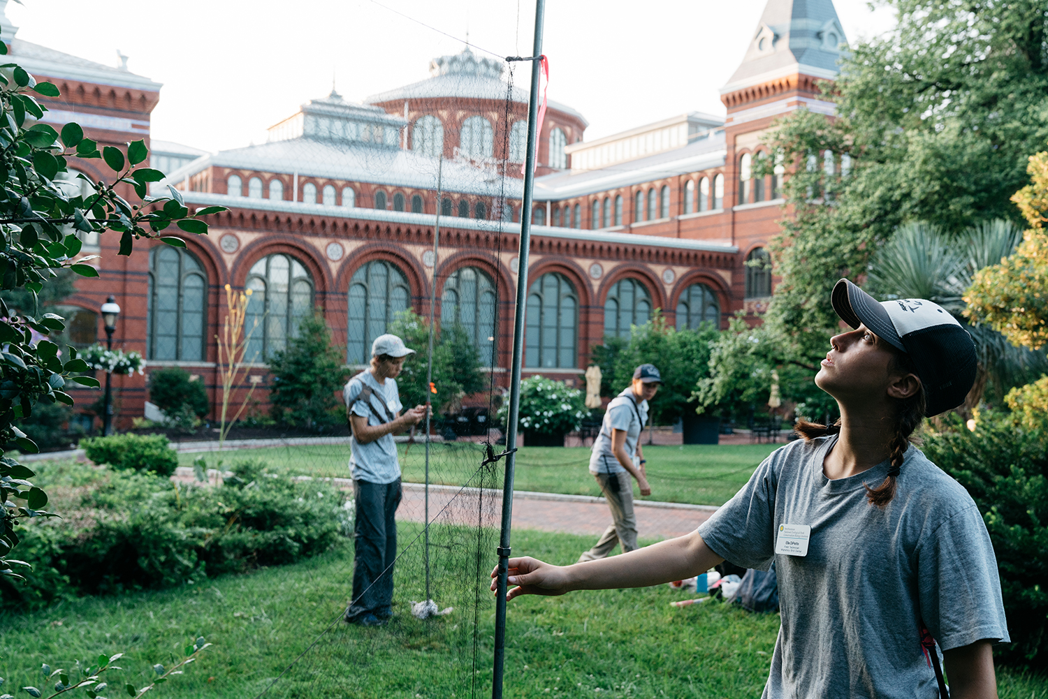 Researchers set up a net in front of a brick building near Washington, D.C.'s National Mall