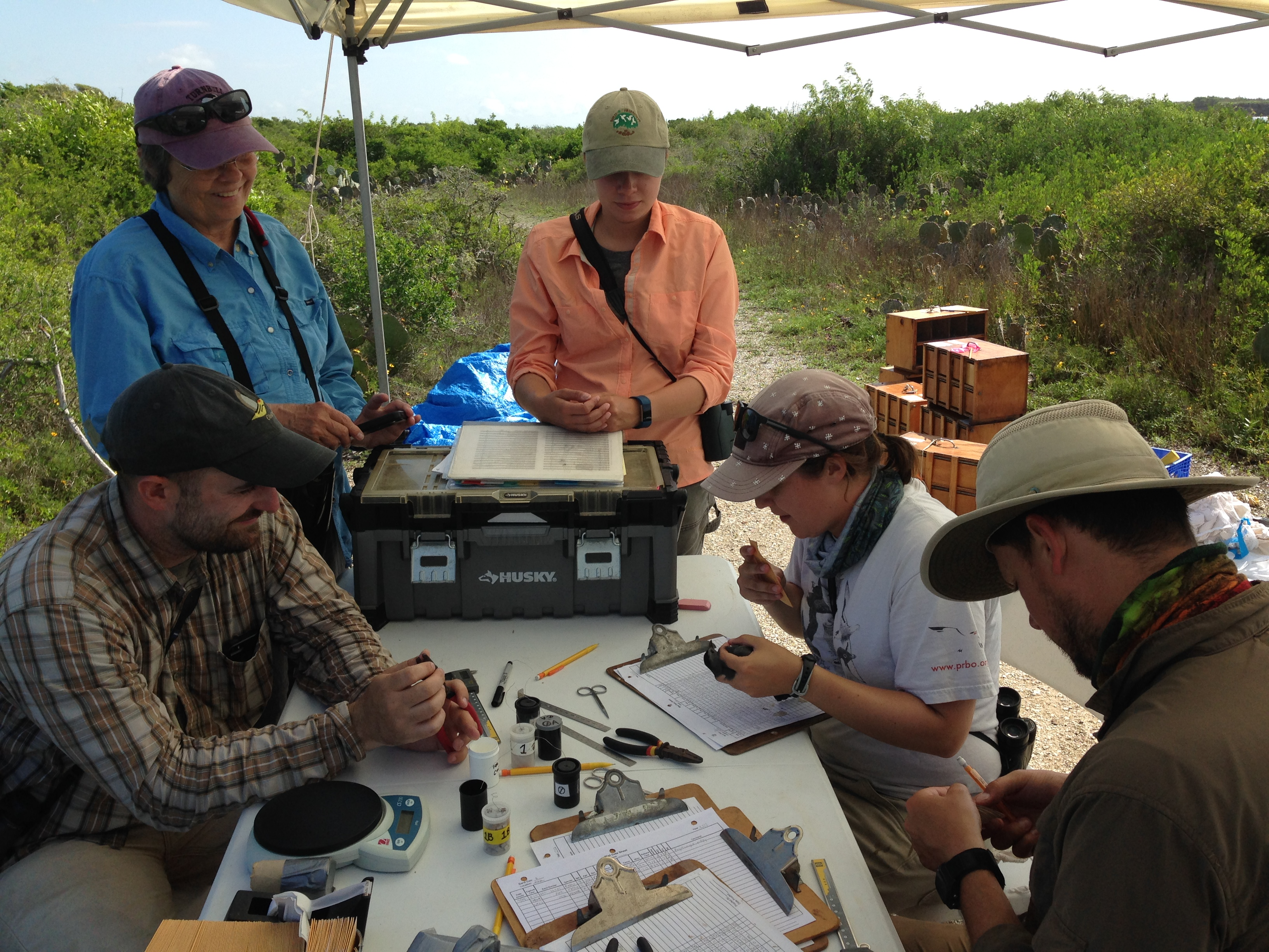 A group of scientists sits around a table in the field making notes on clipboards