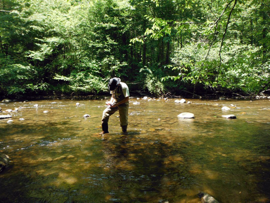 Taking notes in a stream. Photo courtesy of Jeff Storey