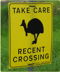 take care recent crossing sign with large bird pictured on it