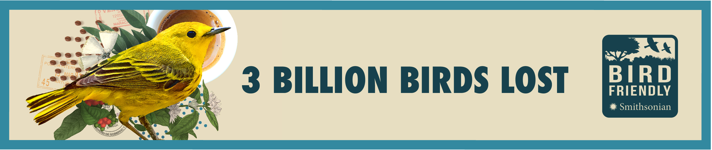 """A banner with the text """"3 billion birds lost"""" and the Smithsonian Bird Friendly logo on the right, and a yellow bird, plant trimmings, postage stamps and a cup of coffee on the left"""