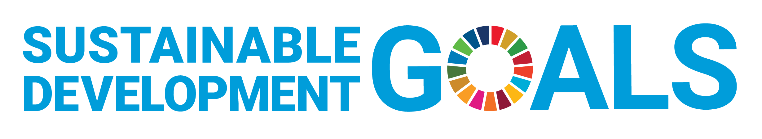 SDG logo without UN emblem