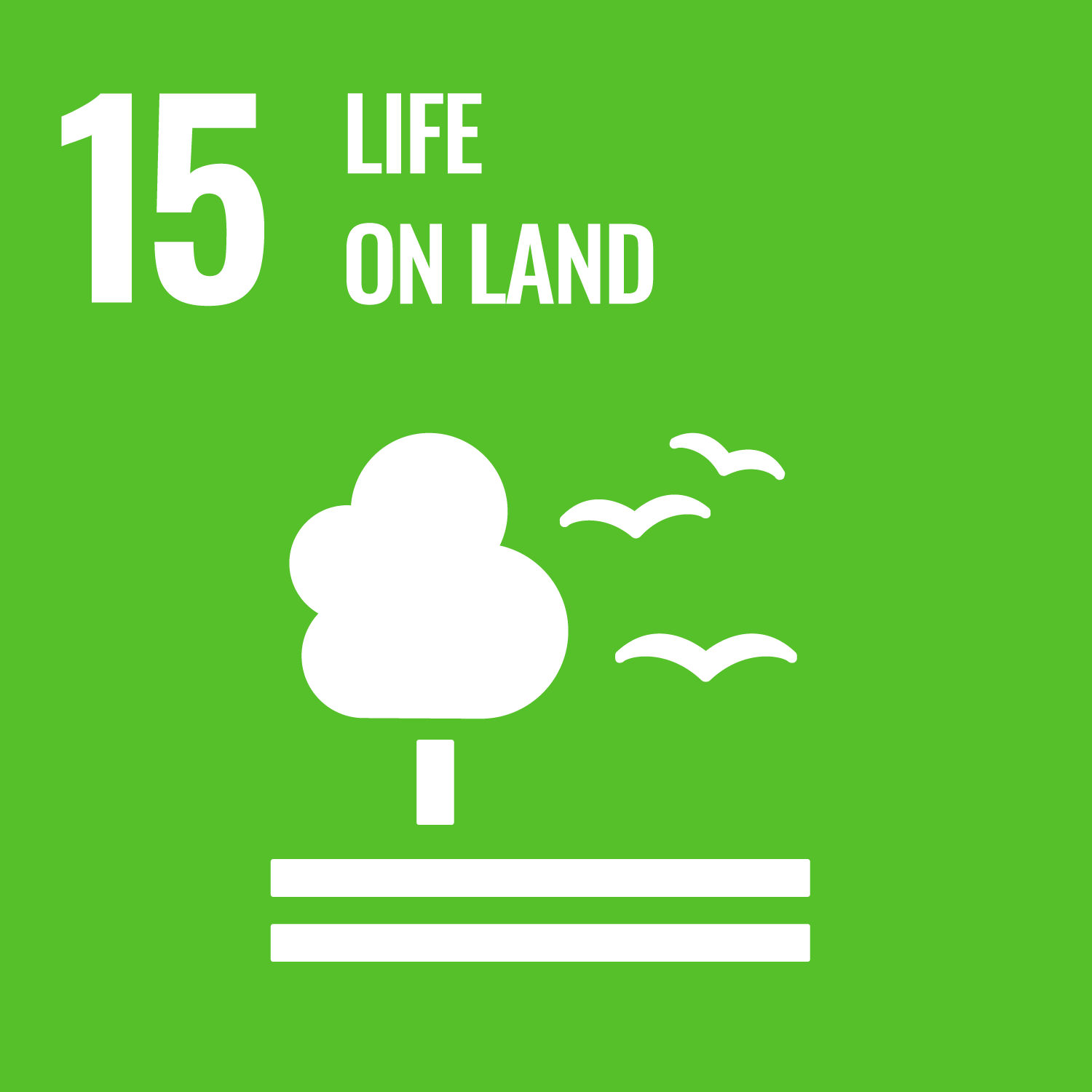 SDG 15 Life on Land logo