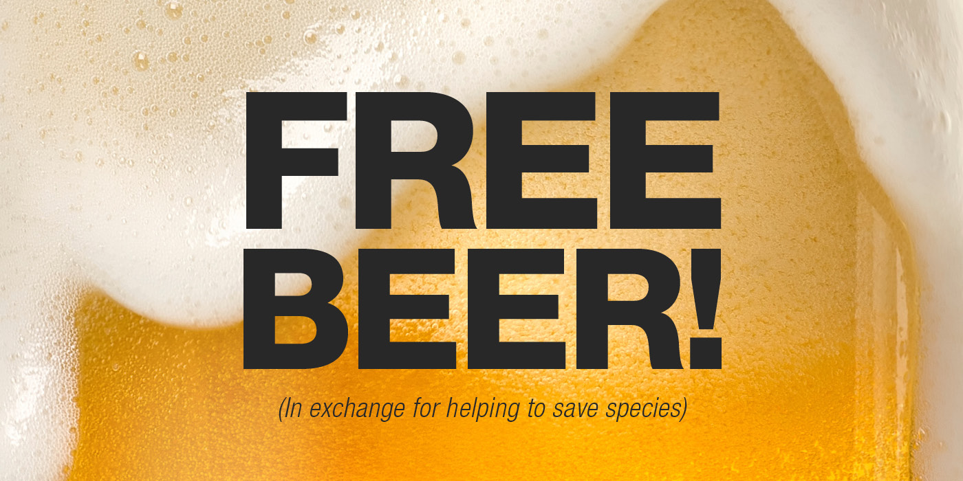 """A close-up photo of foam spilling over the rim of a beer with the text """"Free Beer! (In exchange for helping to save species)"""""""