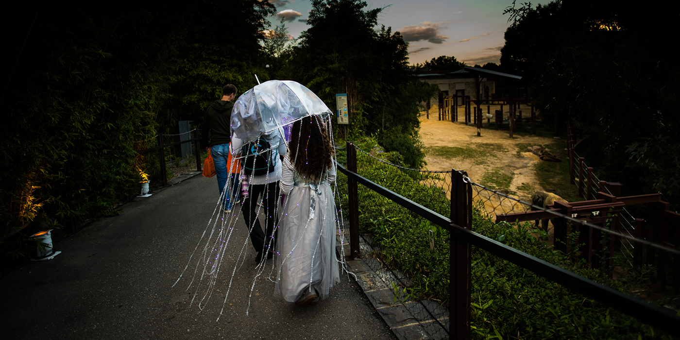A woman holding an umbrella decorated to look like a jellyfish walks down a path at the Smithsonian's National Zoo during the Boo at the Zoo event