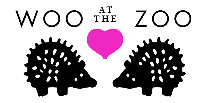 illustration of two hedgehogs with a heart in the middle and the words woo at the zoo