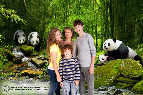 family posing in front of green screen featuring giant pandas and trees in the background