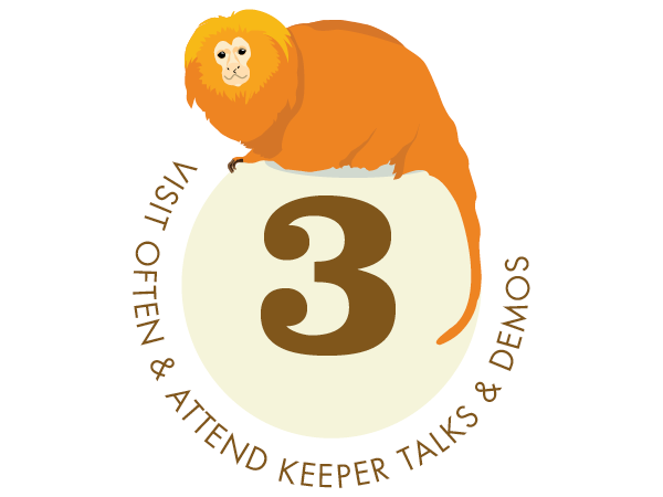 Visit often and attend keeper talks and demos