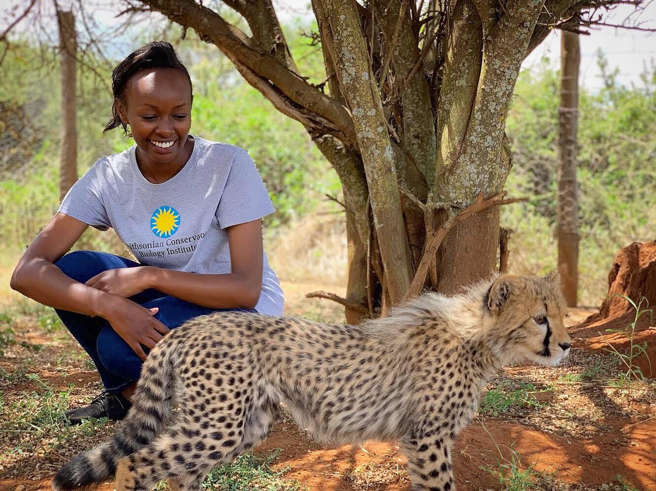 A Global Health Program veterinary fellow kneels near a young cheetah