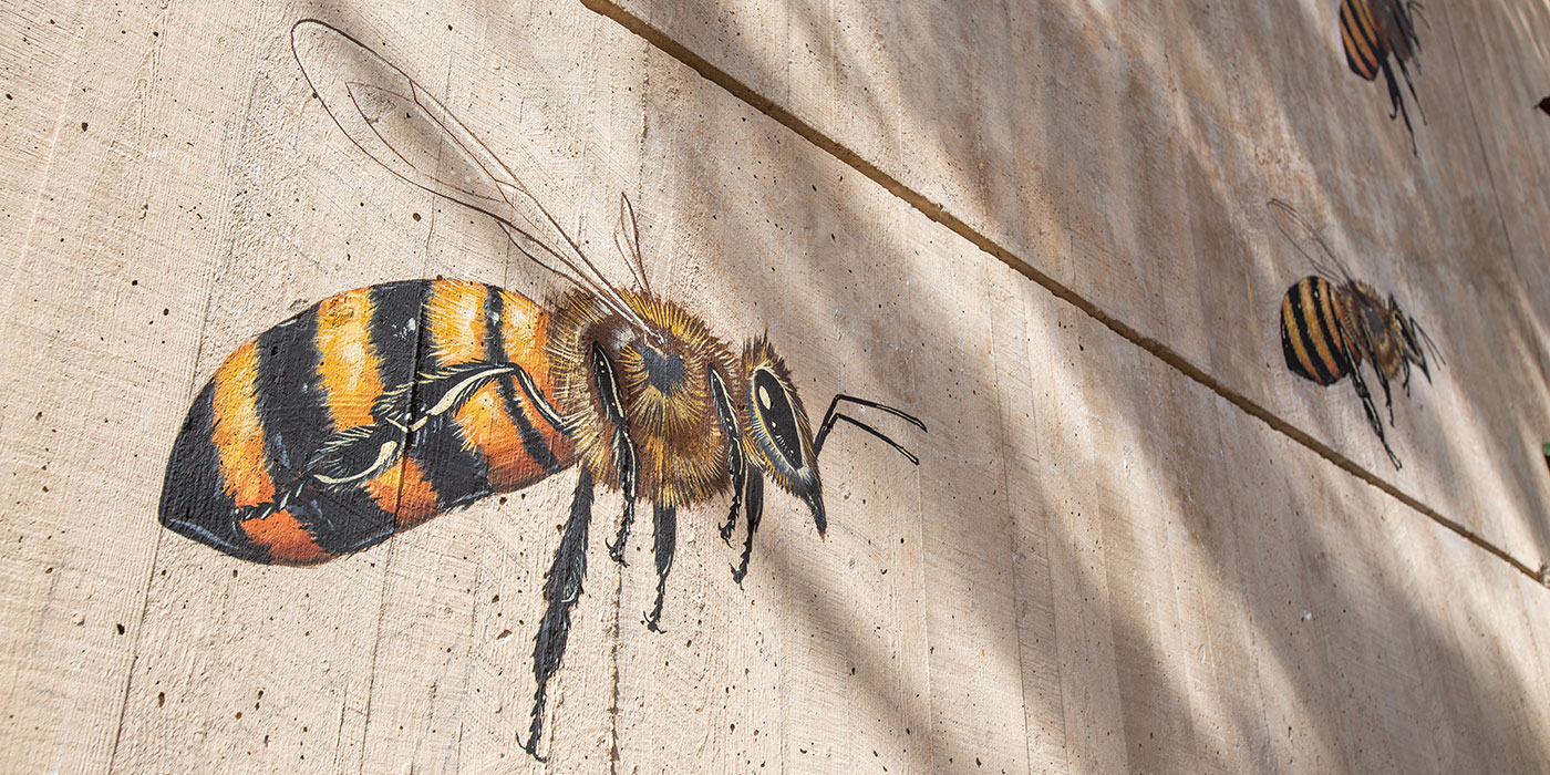 A hand-painted bee by artist Matthew Willey on the front of the Smithsonian's National Zoo's Great Ape House