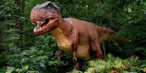 DinoRoars   Smithsonian's National Zoo