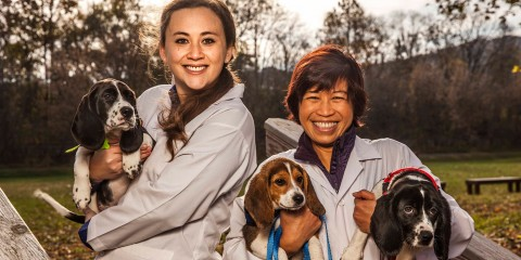 two female scientists holding three of the first puppies born through ivf