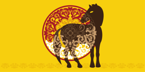 a graphic image of a Przewalski's horse stands in front of a decorative mandala shape