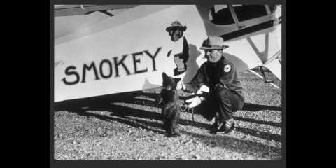 "Smokey Bear the cub stands with a ranger in front of an airplane with the words ""Smokey"" painted on it"