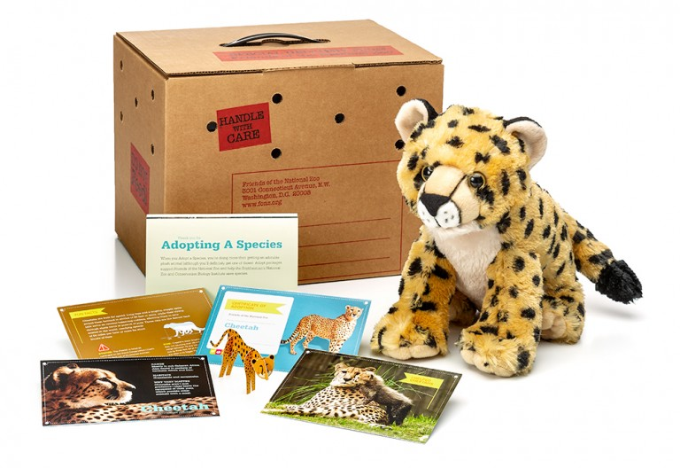 adopt a cheetah package featuring a plush, carrier box and photo-filled five card set