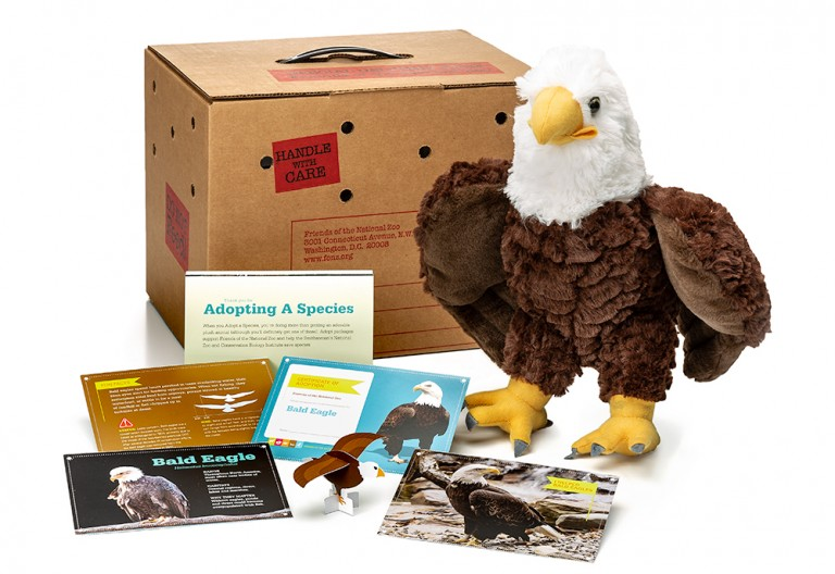 adopt a bald eagle package featuring a plush, carrier box and photo-filled five card set