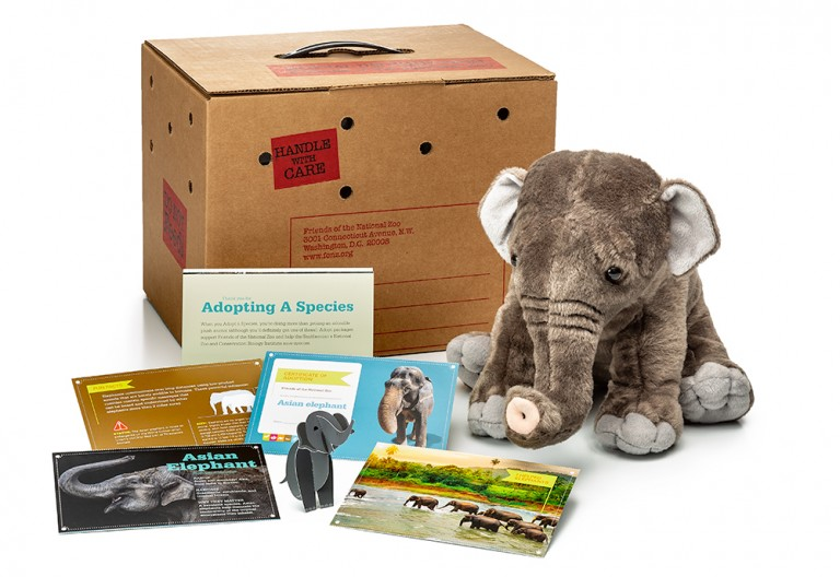 adopt an Asian elephant package featuring a plush, carrier box and photo-filled five card set