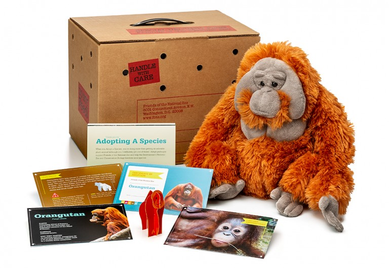 adopt an orangutan package featuring a plush, carrier box and photo-filled five card set