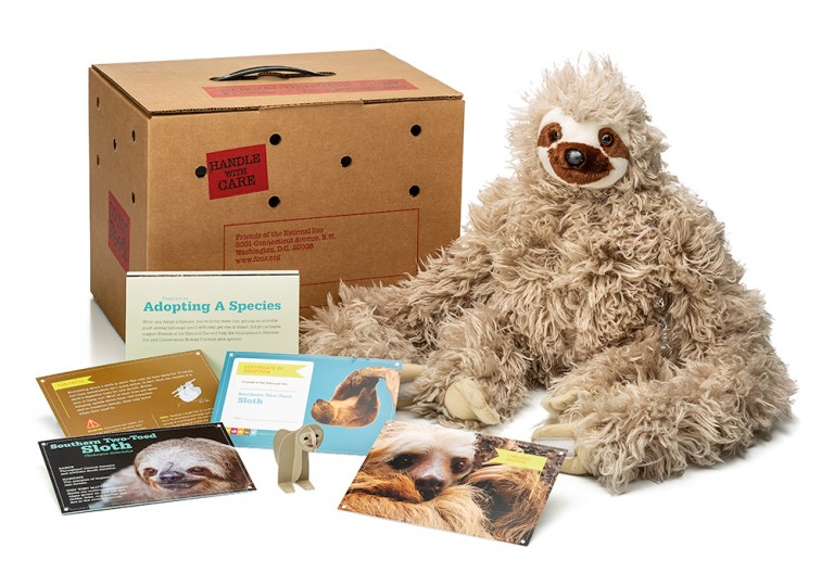 adopt a two-toed sloth package featuring a plush, carrier box and photo-filled five card set