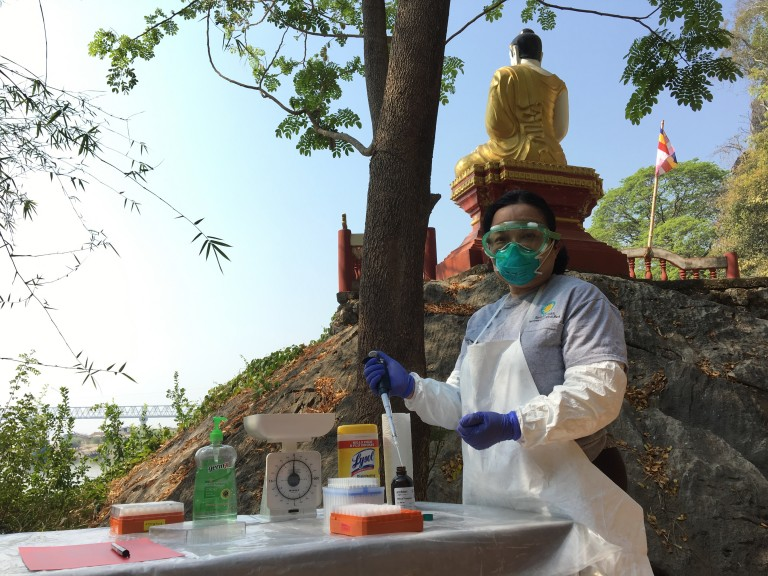 Global Health Program's Dr. Ohnmar stands at a table with a tray of samples from a nearby temple in Myanmar