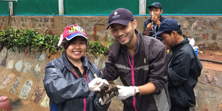 Dr. Yaoyao Mathura and Dr. Marc Valitutto examine an endangered big-headed turtle.