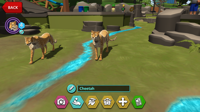 """A still from the mobile game """"Zoo Guardians."""" Two digitally illustrated cheetahs walk near a stream of water. The text """"cheetah"""" and a series of icons are at the bottom of the screen. An icon of a cheetah and a """"back"""" button are in the top left."""