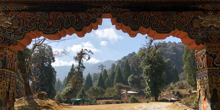 The Motithang Takin Preserve in Thimpu, Bhutan.