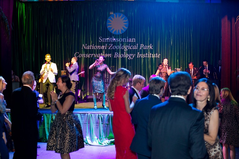 A group of guests with a band playing on stage in the background at the Smithsonian's National Zoo's Monkey Business Gala