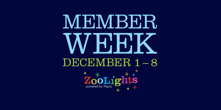 """The text """"Member Week, December 1-8"""" and the ZooLights, powered by Pepco, logo"""