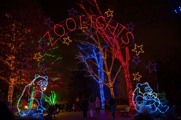 """The main entrance to ZooLights at the Smithsonian's National Zoo, featuring trees wrapped in holiday lights, light-up pandas and a lit sign that says """"ZooLights"""""""