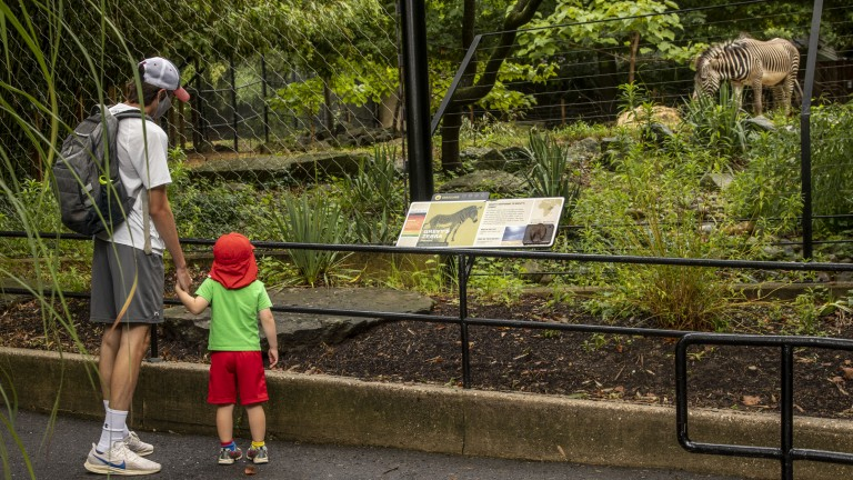 Zoo visitors explore the Zoo on reopening day, July 24.
