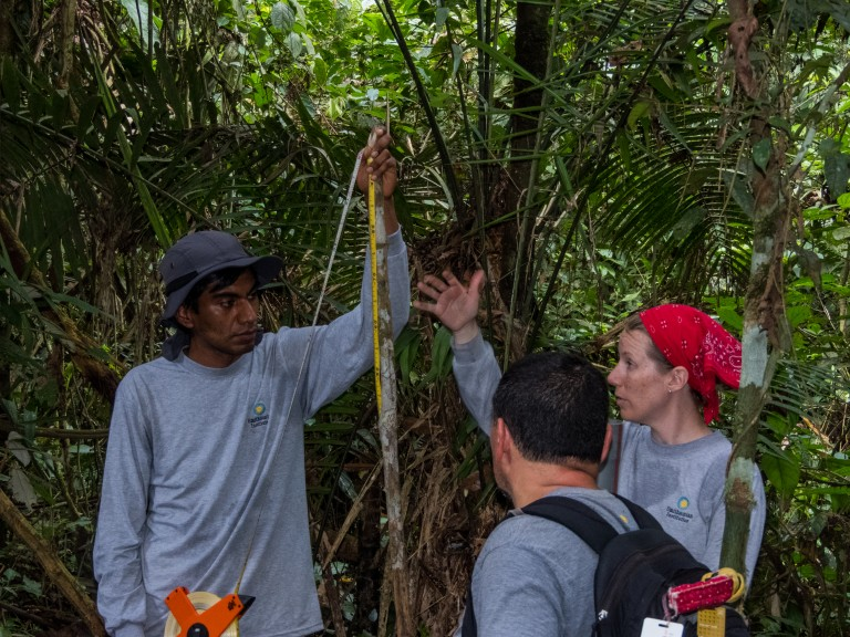 Smithsonian research team setting up light traps at the field site in the Peruvian Amazon.