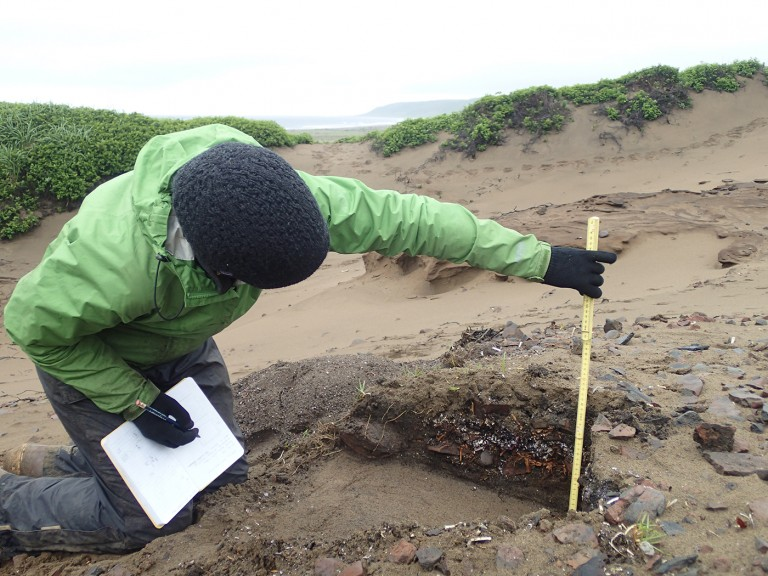 Researcher Catherine West measures an archaeological site on Alaska's Chirikof Island