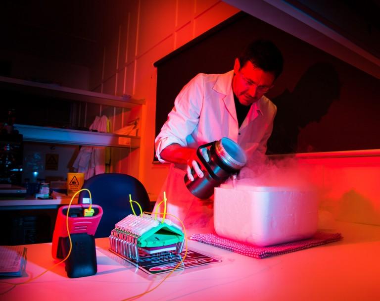 Scientist cryopreserving coral larvae.