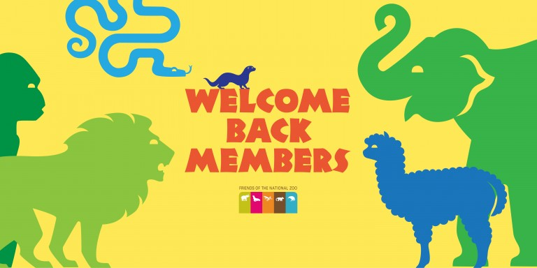 "Green and blue cartoon animal silhouettes with the words ""Welcome Back Members"""