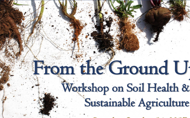 """roots and dirt with the words: """"From the Ground Up Workshop on Soil Health & Sustainable Agriculture"""""""