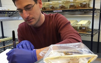 scientists taking notes next to a frog on a scale