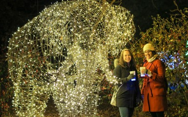 Two guests in winter clothes standing in front of a ZooLights elephant