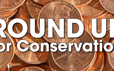 "A graphic featuring a photo of pennies with the text ""Round Up for Conservation"""