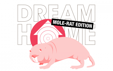 "An illustration of a naked mole rat in front of the words ""Dream Home: Naked Mole-Rat Edition"""