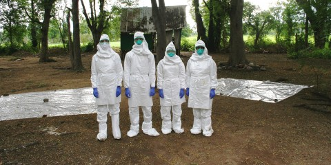 four researchers wearing coveralls and masks standing in a forest