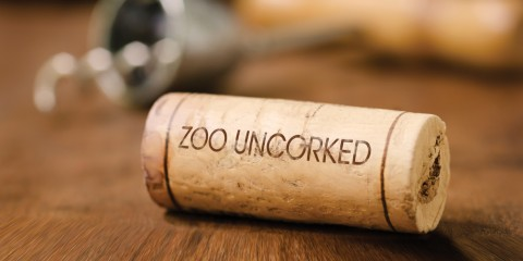 cork with the words zoo uncorked stamped on it