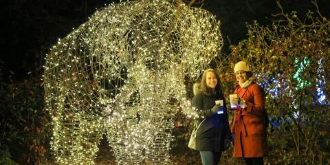 BrewLights guests standing next to ZooLights light sculpture