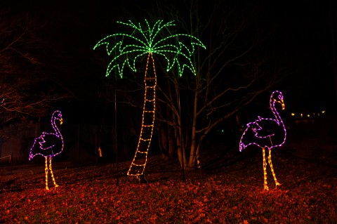 Flamingo and Palm Tree Light Sculpture
